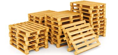 xylines paletes | Ad Pallets