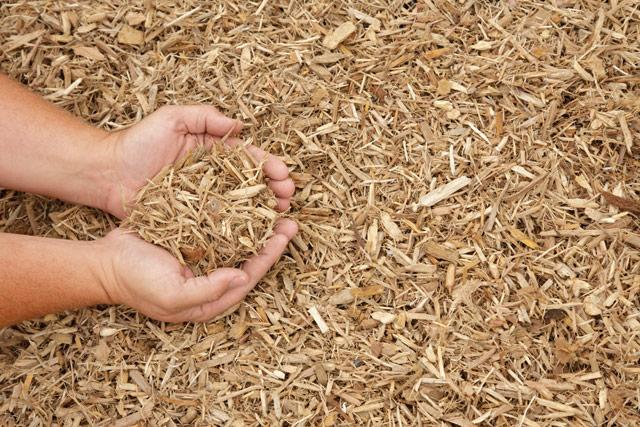 yliko wood chip | Ad Pallets